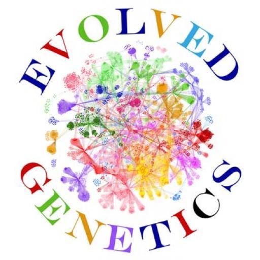 Evolved Genetics